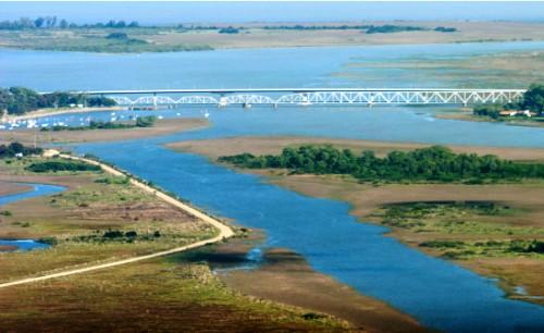 Ley sobre protección del medio ambiente - Uruguay