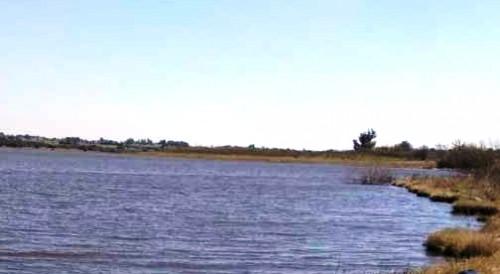 Restauración de ecosistemas en la cuenca del Santa Lucía