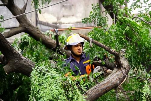 LA DIRECCIÓN DE BOMBEROS TUVO MÁS DE 300 LLAMADAS EN LAS ÚLTIMAS HORAS POR DISTINTOS HECHOS VINCULADOS AL CLIMA