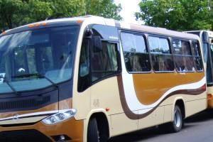 Funcionan nuevos servicios de transporte colectivo hacia Balneario Buenos Aires y José Ignacio