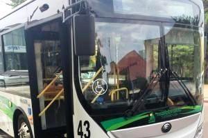 Se cambiarán los trayectos de líneas de transporte debido a la Corrida de San Fernando
