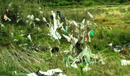 Gobierno ampliará prohibición de plásticos e insta a comercios pequeños a usar bolsas biodegradables