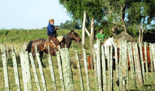 Colonización otorga en arrendamiento 3.000 hectáreas en Rocha