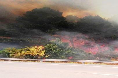Bomberos trabaja en Incendio en Rocha