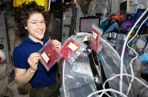 Astronauta bate record