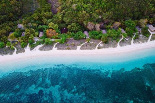 Salvemos nuestros océanos
