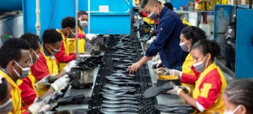 La crisis laboral ocasionada por el coronavirus puede alcanzar a la mitad de los trabajadores