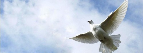 Jornadas de Recuerdo y Reconciliación 8 y 9 de mayo