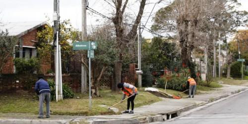 Avanza a buen ritmo la labor de los Jornales Solidarios