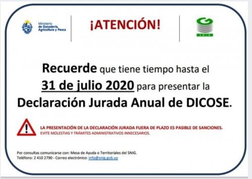 El 31 de julio vencerá el plazo para la declaración jurada de Dicose