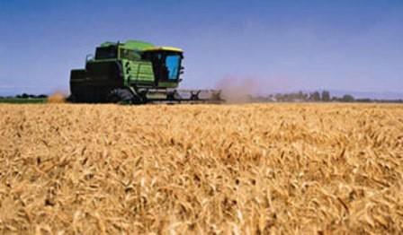 Gabinete Nacional de Bioseguridad autorizó solicitudes de ensayos en campo y producción de semillas para la exportación