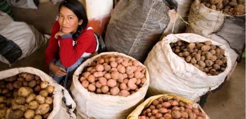 Cinco razones por las que el FIDA está poniendo a los pequeños agricultores a la vanguardia de la transformación de los sistemas alimentarios