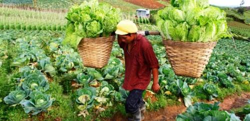 Resumen de un año: fomentar comunidades rurales resilientes en tiempos de cambio