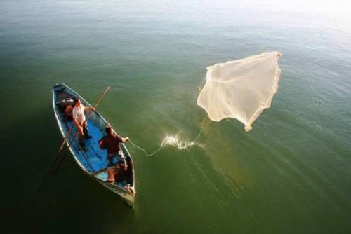 La pesca y la acuicultura son una parte fundamental de la transformación de los sistemas agroalimentarios mundiales, dice el Director General de la FAO