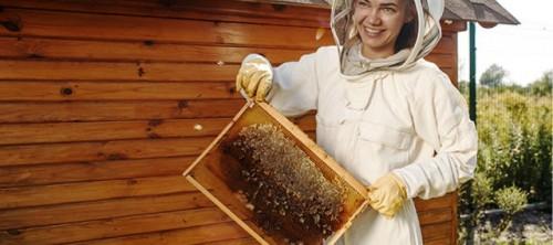 La UNESCO y Guerlain empoderan a las mujeres y apoyan la biodiversidad a través del programa Women for Bees bajo la égida de Angelina Jolie