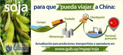 MGAP exhorta a extremar cuidados para evitar contaminación de la cosecha de soja