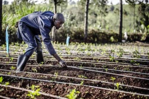 Lo que significa el agua para un agricultor, antes migrante y hoy repatriado, en Kenya