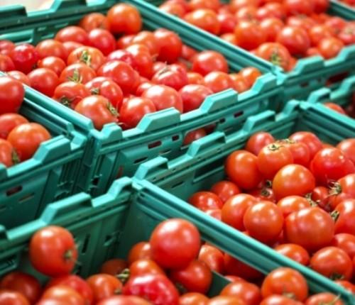 ¿Cómo impulsan el sector agrícola las empresas responsables?