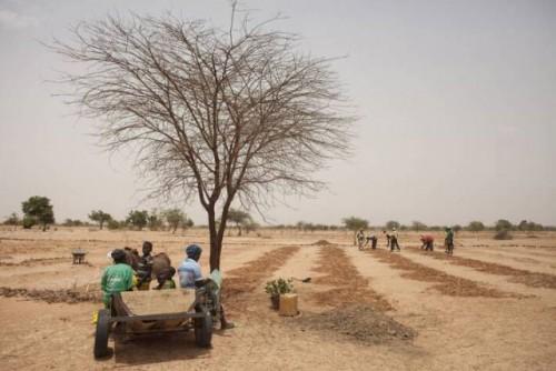 El ambicioso programa de 104 millones de dólares se centra en la degradación de la tierra en África y los países de Asia central