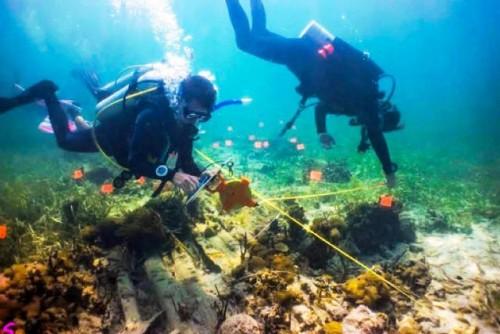 8 Junio 2021 Día Mundial de los Océanos