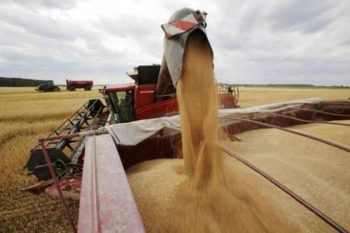 Perspectivas agrícolas de la OCDE y la FAO presenta las tendencias de producción, consumo, comercio y precios para la próxima década