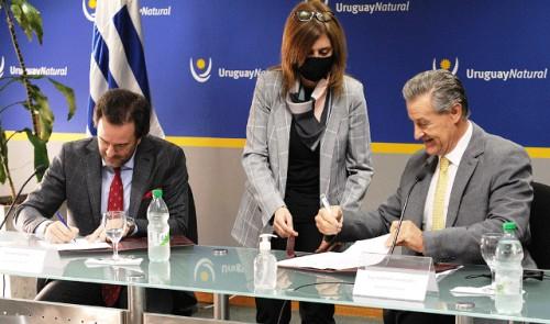 Herramienta informática permitirá analizar tránsito y comportamiento de turistas extranjeros que ingresen a Uruguay