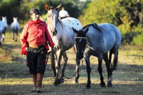 Unatra realizará una marcha a caballo el día del paro general convocado por el Pit Cnt